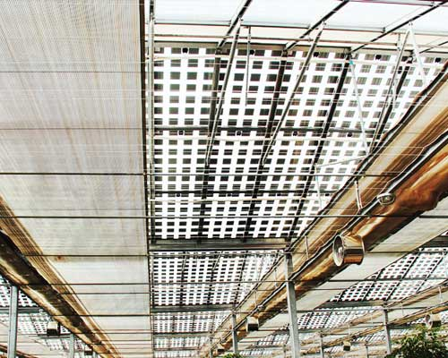 温室大棚自动控制成功案例