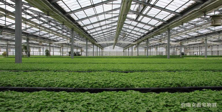 智能温室大棚冬季防护