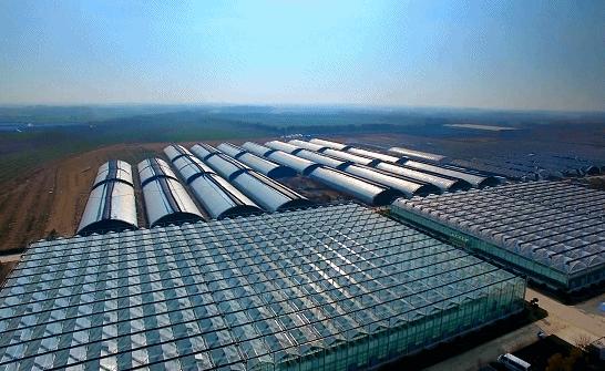 智能温室大棚的结构与造价分析